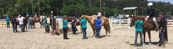 Special Equestrians 8a